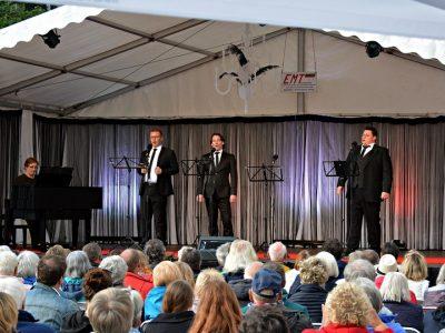 Rathausfestival – Konzert mit Helg ...