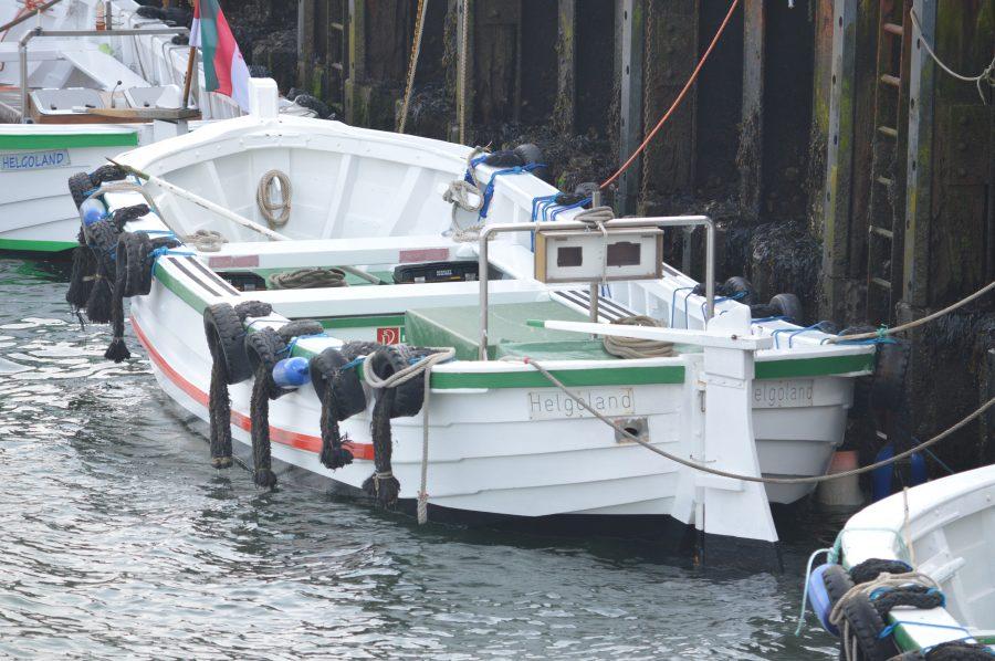 Inselrundfahrten mit dem Börteboot